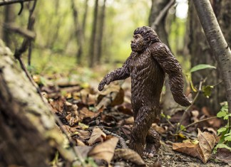 Man Calls 911 Claiming Sasquatch Attacked Him With An Axe