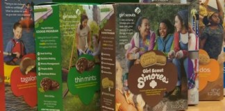 Oregon Man Who Faked Robbery To Steal From Girl Scouts Has Been Sentenced
