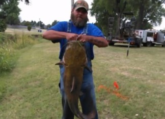 City Workers Catch 45-Pound Catfish While Fixing Creek Pipe