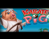 Karate Pig Slot by Microgaming