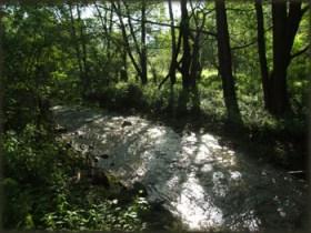Velika reka