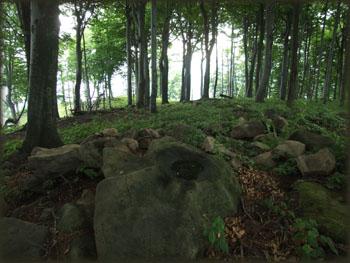 Na Šomrdskom kamenu