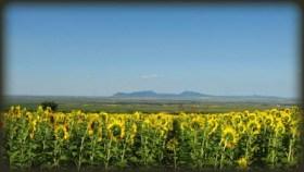 Pogled sa Zagajičkih brda prema Vršačkim brdima