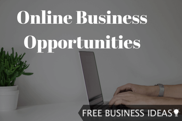 online business opportunities