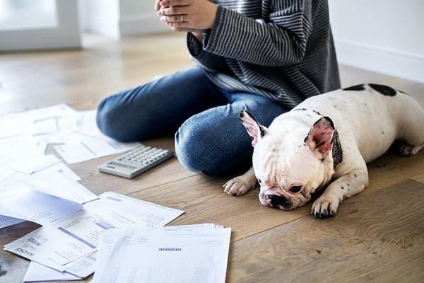 Good Idea to Take Out a Loan