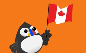 Free Conference Call Canada Puffin