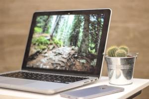 View of opened laptop on desk beside cactus and mobile device, displaying beautiful wooden forest up close