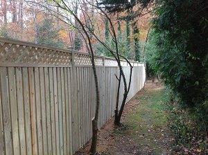 Fence 102