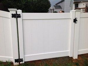 Fence 51