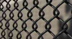 Chain-Link Fences Freedom Fence & Deck