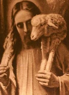 . . . Lamb-on-Shoulders (2)