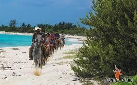 PV horseback ride