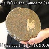 15-03-puerh-tea-vintage-600000-vancouver