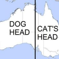 15-04-australia-cat-dog-head