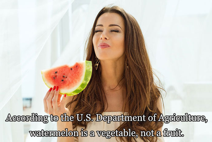 16-05-women-eating-watermelon-is-a-vegetable