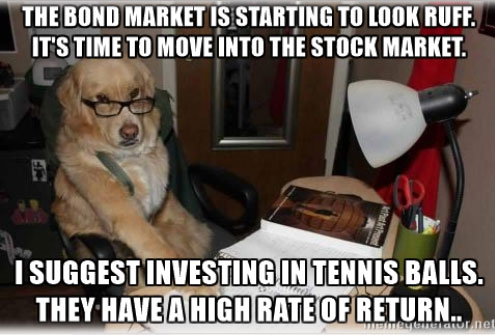16-08-financial-advice-dog-bonds-tennis-balls