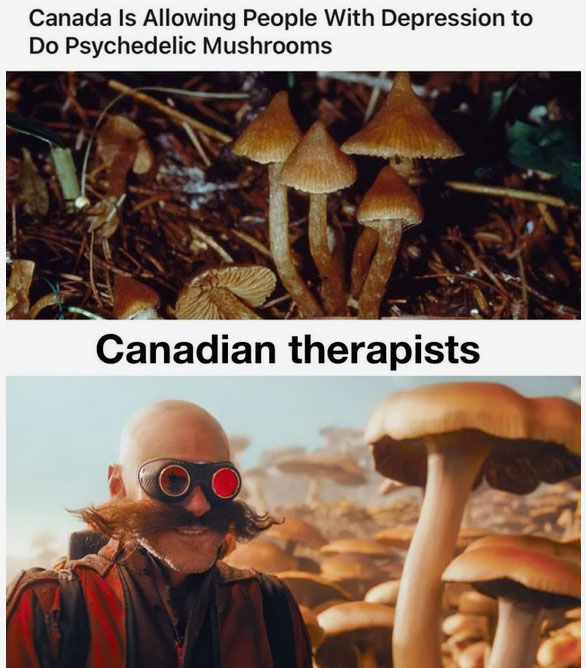 psychedelics is the future.