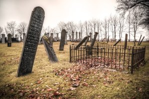 Read more about the article Poem:  Death