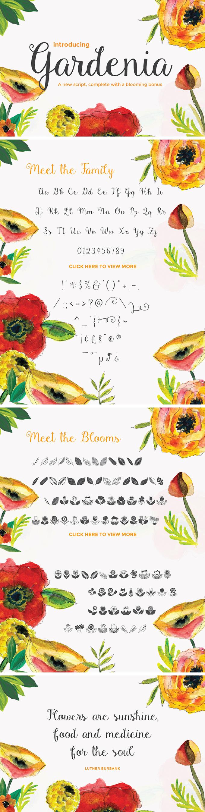 Gardenia Script big