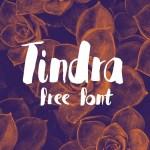 Tindra Free Handwritten Font
