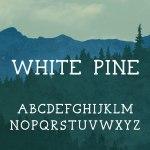 White Pine Serif Font