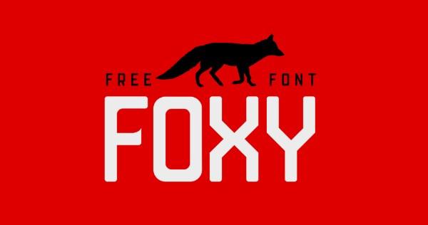 Foxy Display Sans Font