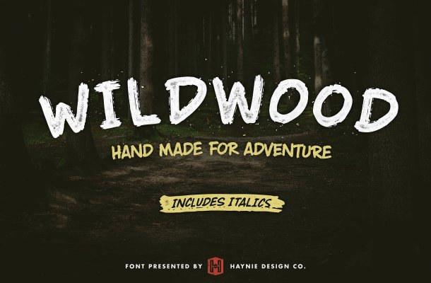 Wildwood Dry Brush Free Font