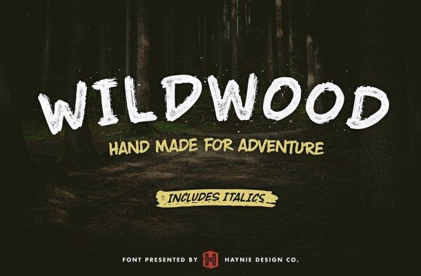 Wildwood Dry Brush Free Font