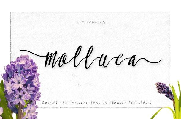 Molluca Script Font
