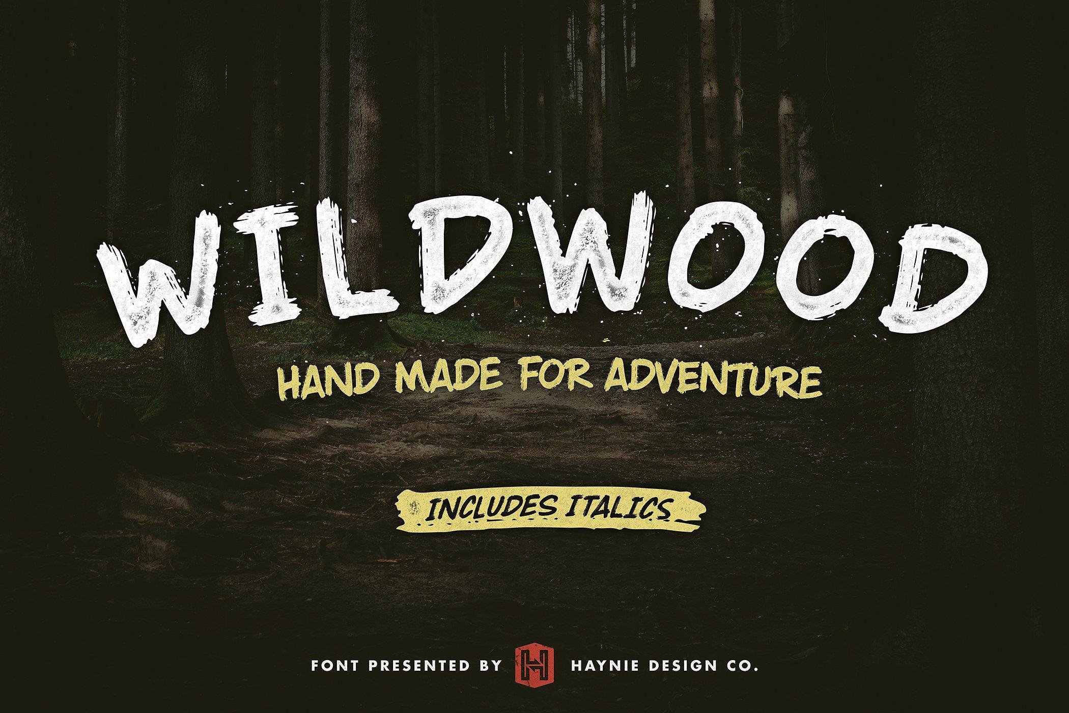 wildwood-dry-brush-lettering-font
