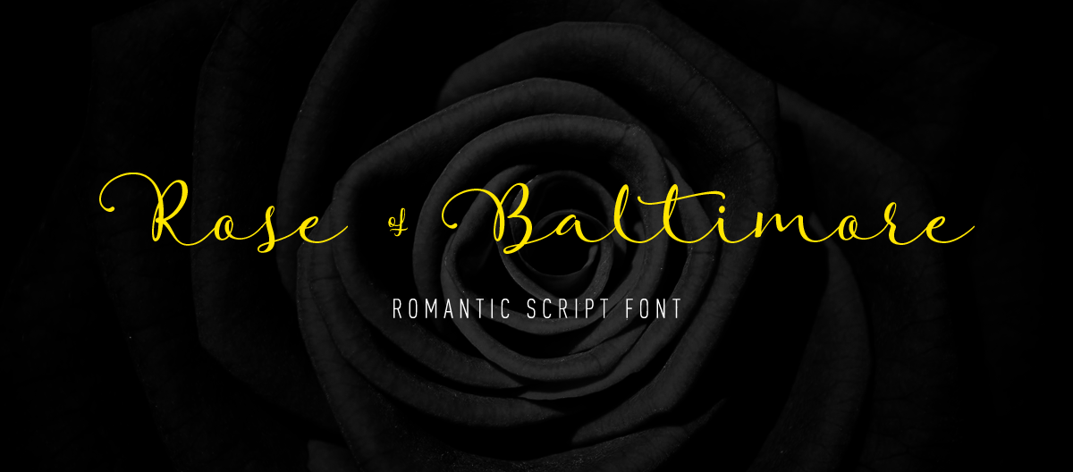 rose_baltimore_1