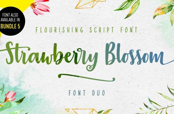 Strawberry Blossom Script Font