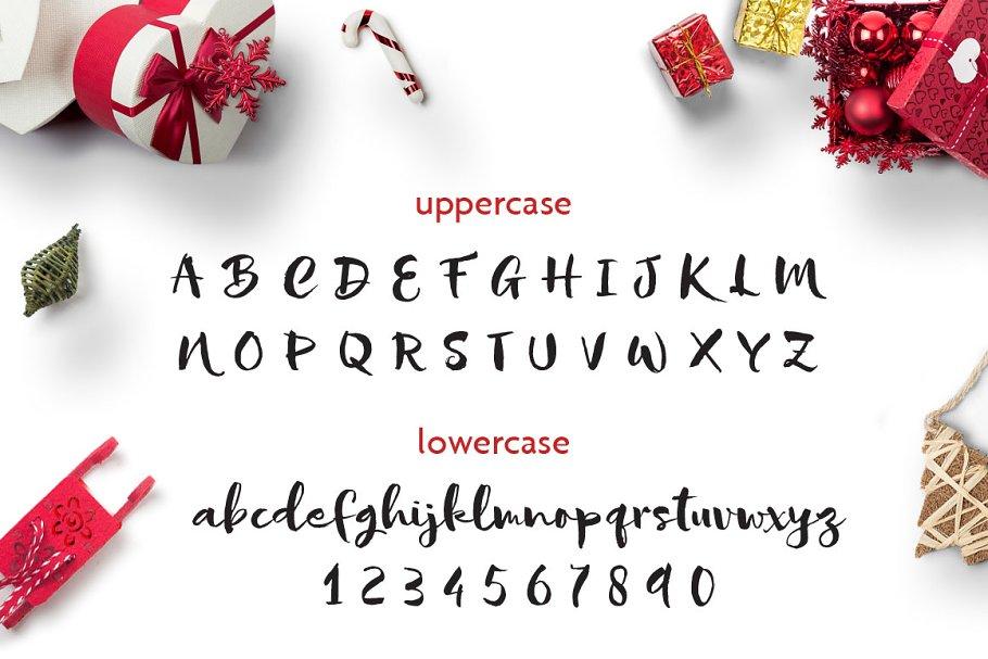 Sofie Script Font-1
