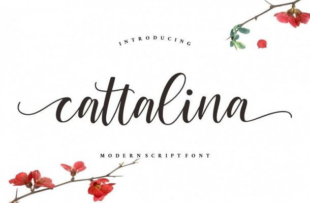 Cattalina Script Font