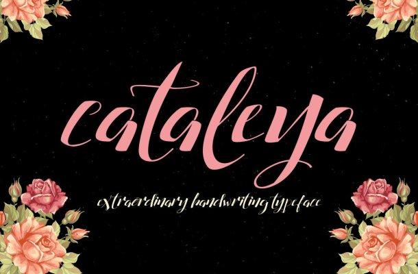 Cataleya Script Font