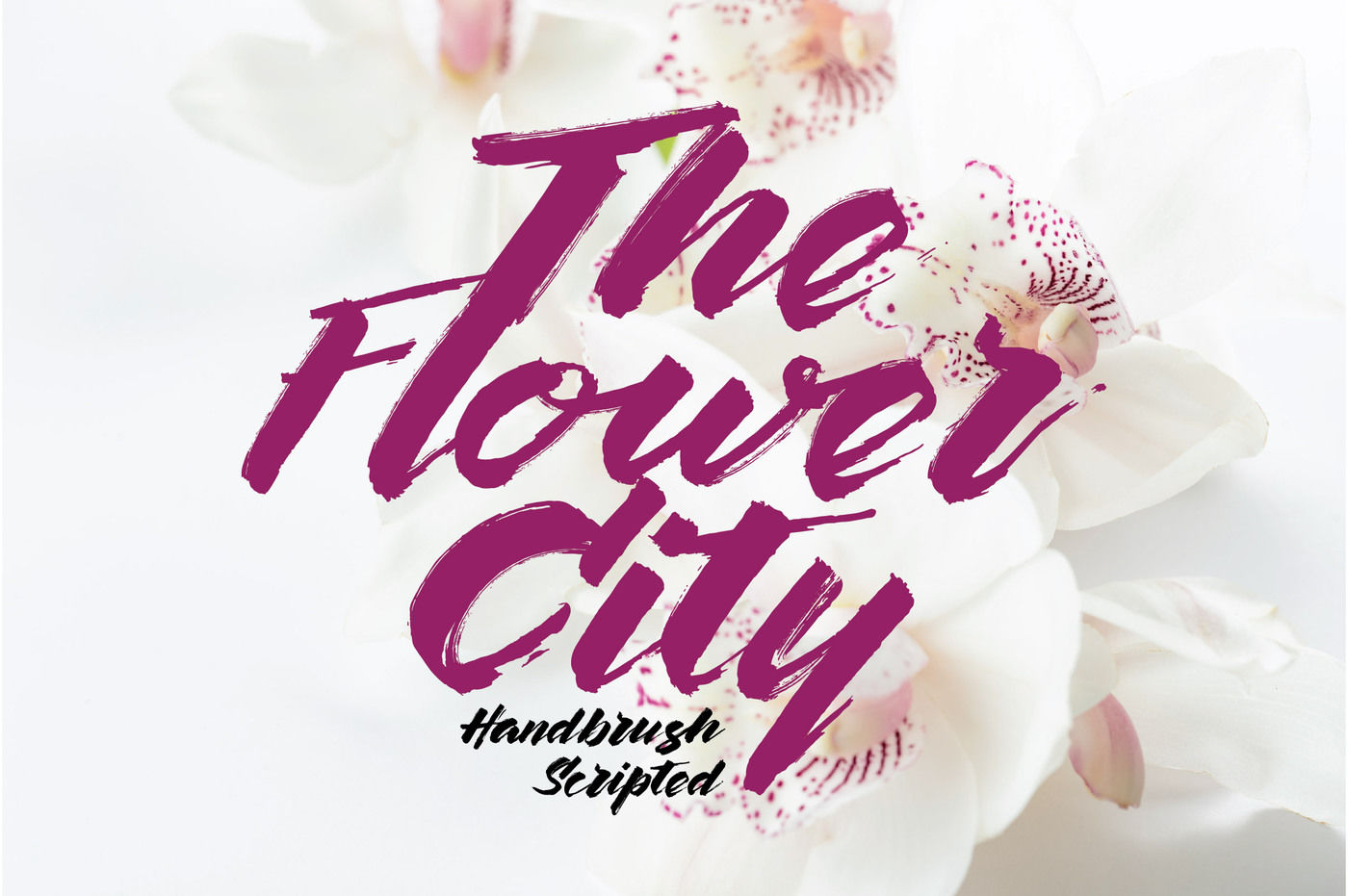 The-Flower-City-Font
