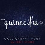 Quinnesha Script Font