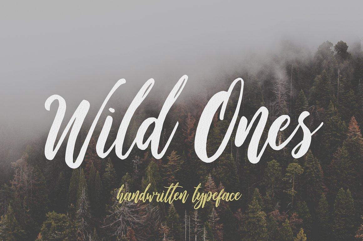Wild-Ones-Font