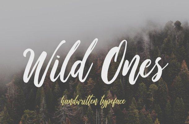 Wild Ones Script Font