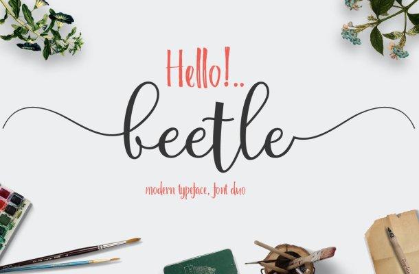 Beetle Duo