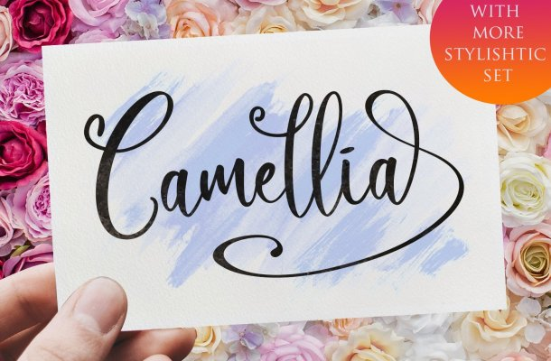 Camellia Calligraphy Font