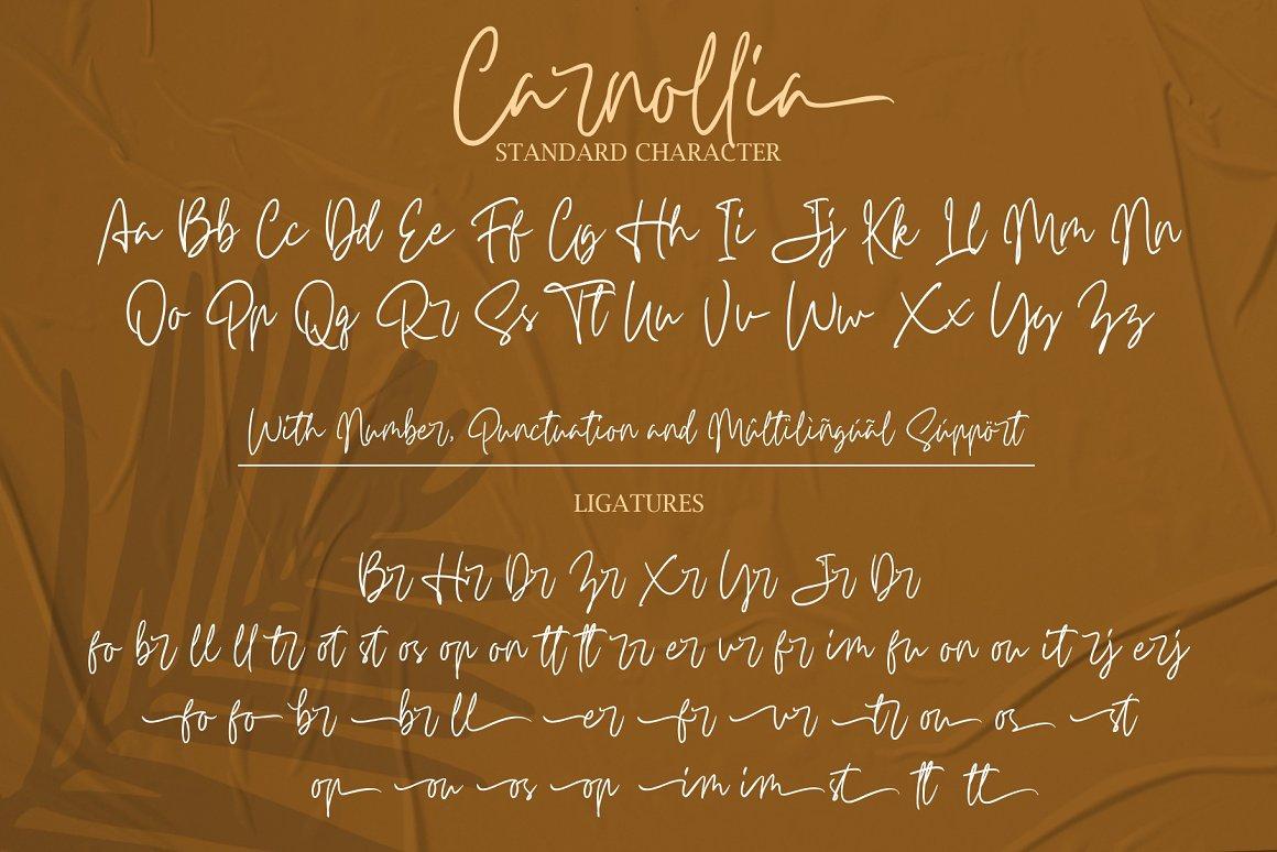 Carnollia-Font-3