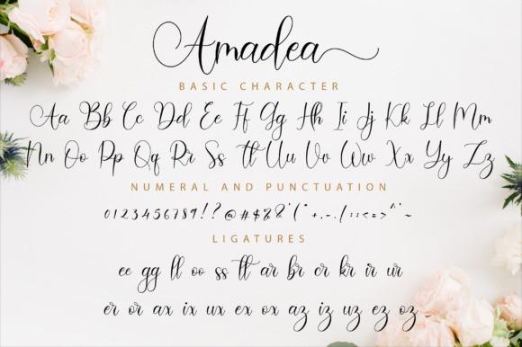 amadea-script-font-4
