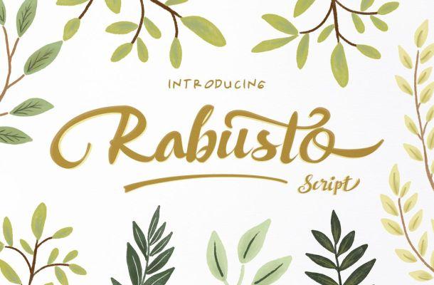 Rabusto Script Font