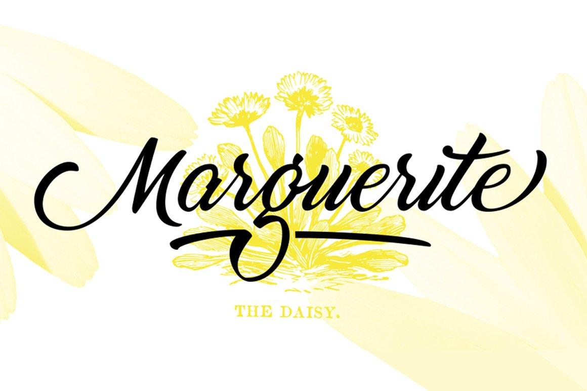 Marguerite-Font
