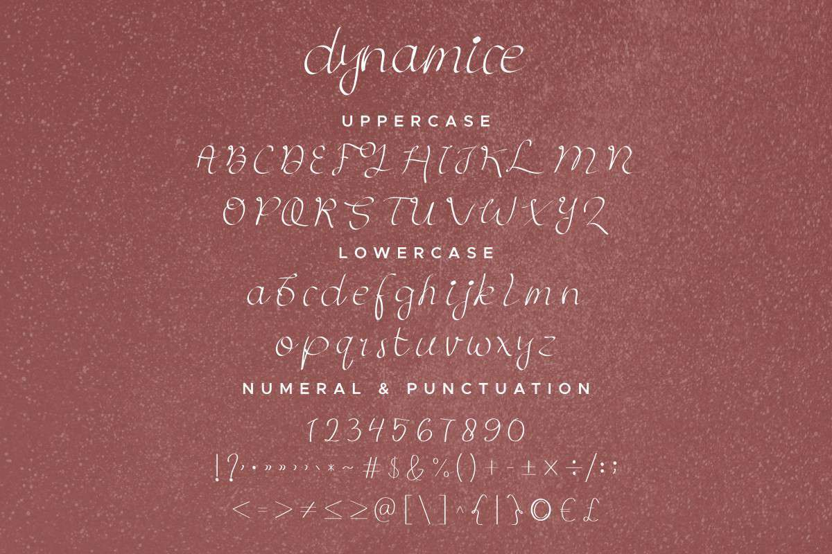 Dynamice-Font-Duo-4