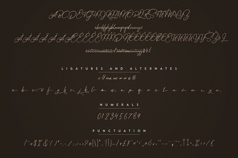 Elysian-Handwritten-Script-Font-3