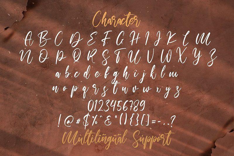 Walentiny-Handwritten-Script-Font-4