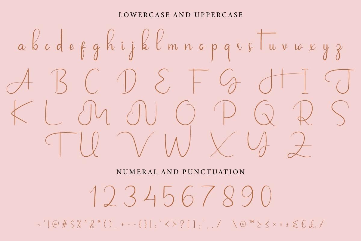 Jalousie-Calligraphy-Script-Font-3
