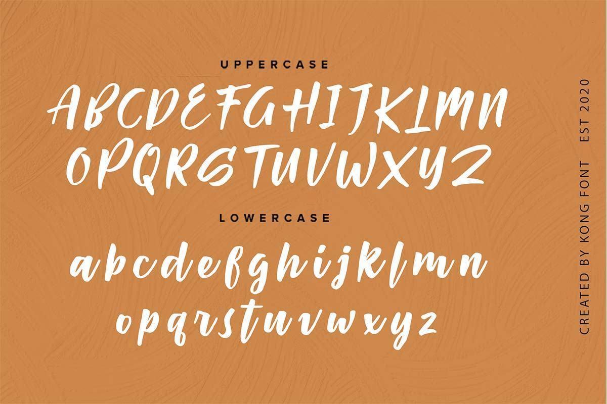 Passifille-Bold-Script-Font-3